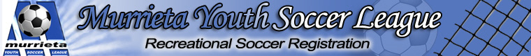 MYSL Recreational banner